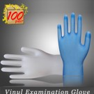 Vinyl Examination Gloves 5